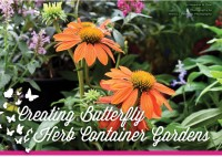 Creating Butterfly & Herb Container Gardens